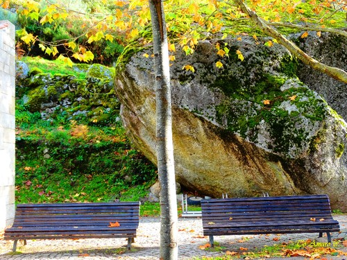 Fotos de Outono !!! 072.jpg