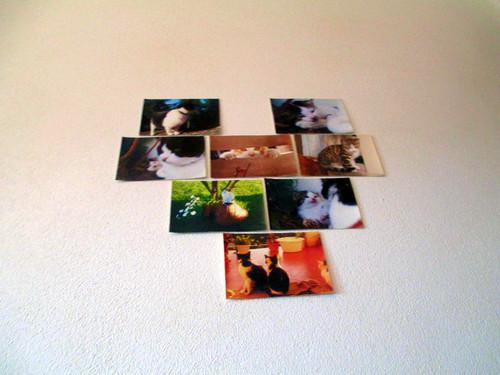 Fotografias.jpg
