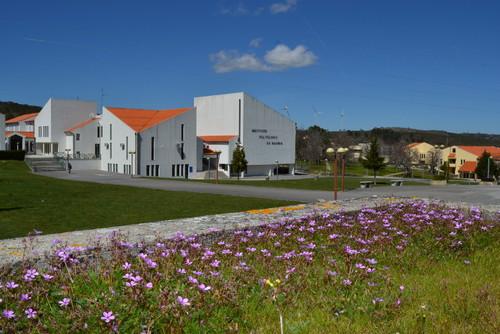 IPG - campus -flores.jpg