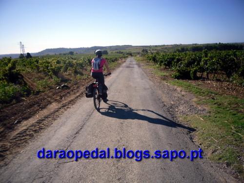 Canal_midi_dia_04_03.JPG