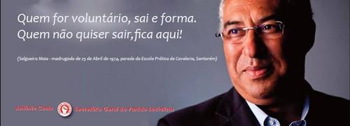 salgueiro2.jpg
