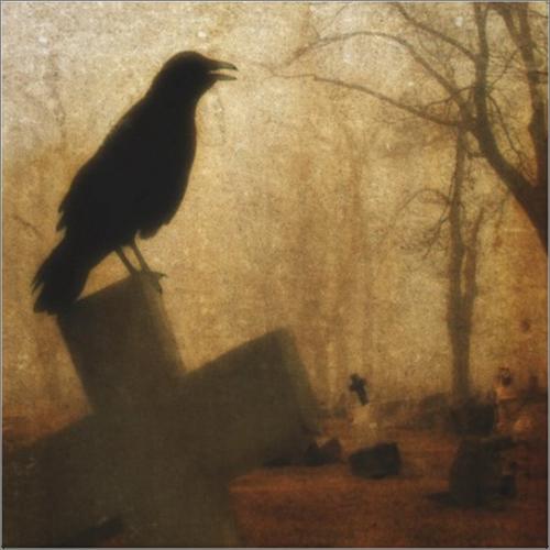 corvo sobre a cruz.jpg.png
