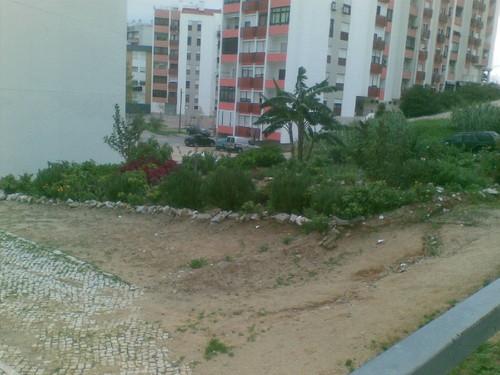 Jardim de Dona Vanda 4. Foto de F.M.C.L.