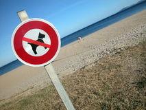 nenhum-sinal-do-cão-na-praia-9817540.jpg