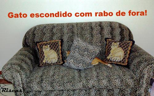 gatoescondidocomrabofora.jpg