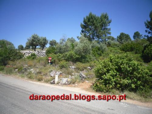 Fatima_Tomar_081.JPG