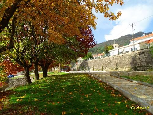 Fotos de Outono !!! 022.jpg