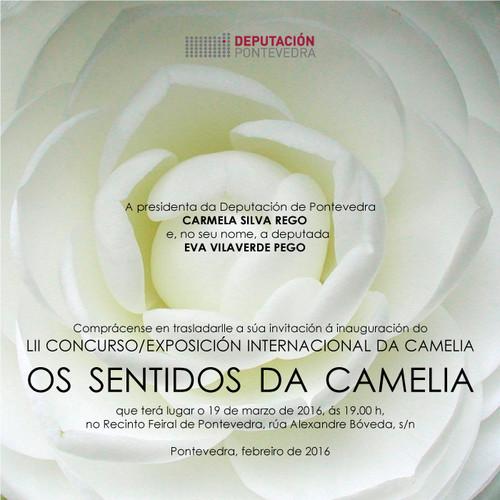 LII Concurso Exposición Internacional da Camelia