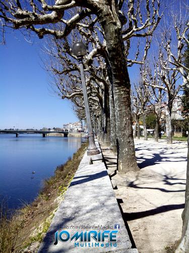Candeeiro inclinado no parque verde do Mondego em Coimbra - Candeeiro de Pisa