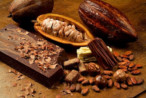 Cacau-e-chocolate.jpg