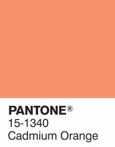 15-1340-cadmium-orange-pantone-fashion-color-repor