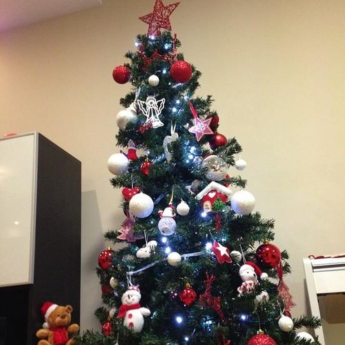 árvore natal.jpg