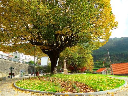 Fotos de Outono !!! 012.jpg