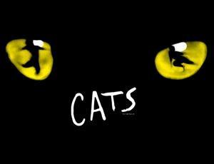 cats_2014_300x230.jpg