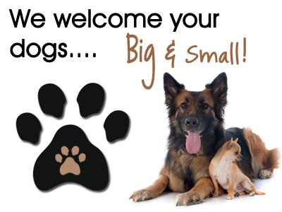 Imagem de Pet Friendly.png