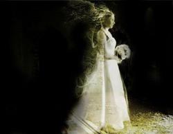 Noiva Fantasma.jpg