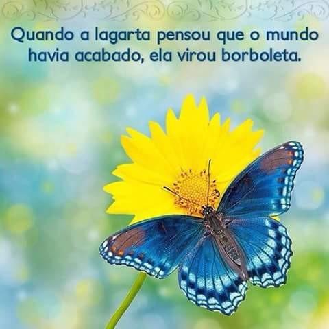 FB_IMG_1469916860072.jpg