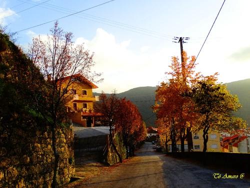 Fotos de Outono !!! 113.jpg