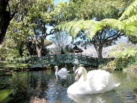 JardinsLago03.jpg