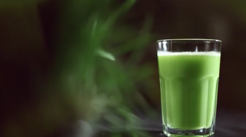 sumo verde.PNG