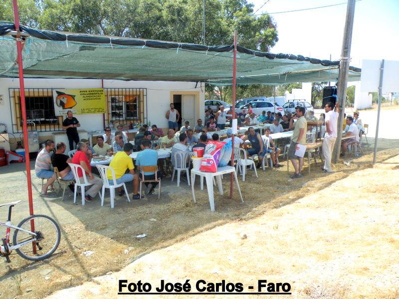 Leilão Almodôvar 015.JPG
