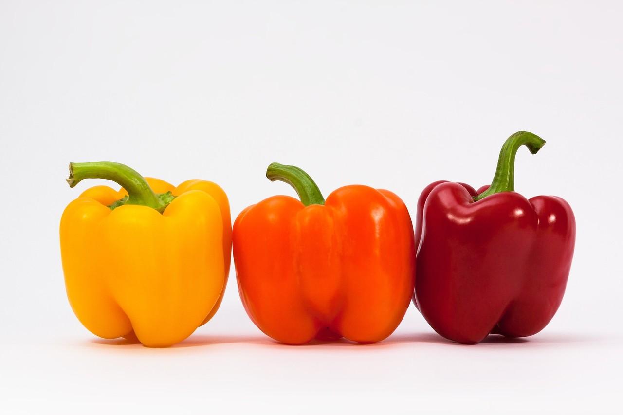 Pimentos coloridos.jpg