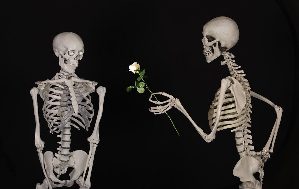 skeletal-601213_960_720.jpg