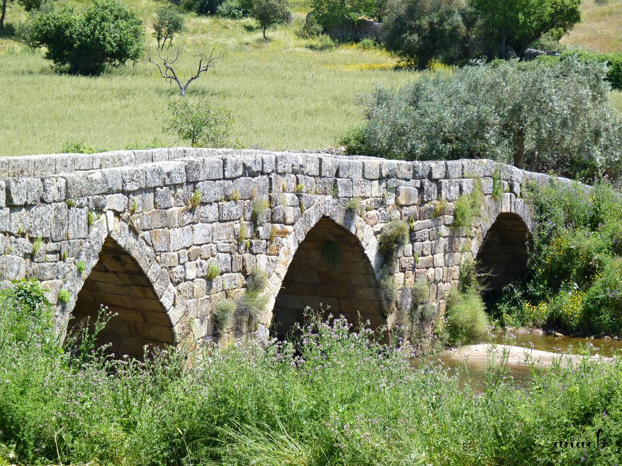 Idanha-a-Velha (120) Ponte romana.jpg