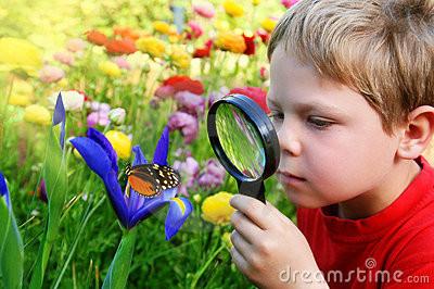 criança-observando-uma-borboleta-8906266.jpg