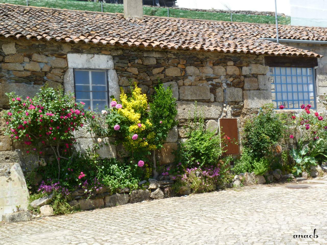 Idanha-a-Velha (126) casa.jpg
