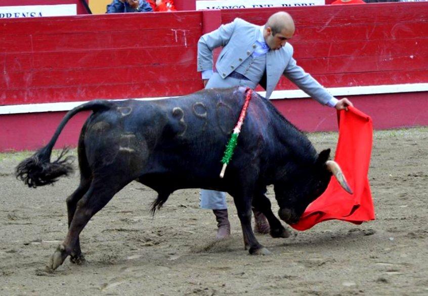 Lide Toiro #2 Javier Castaño Pivo.jpg