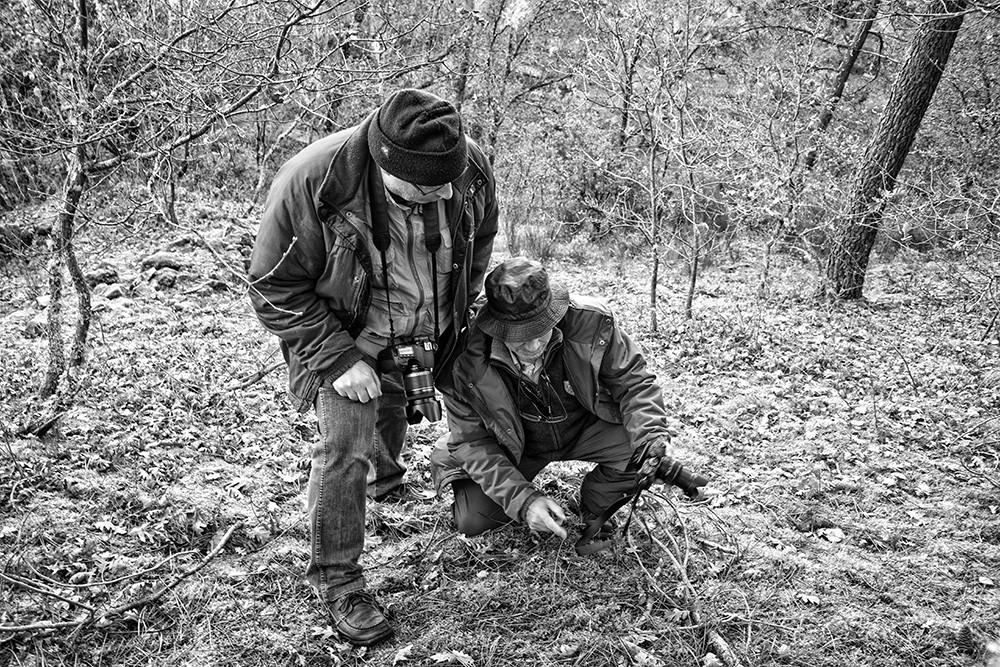 montalegre+matança abobeleira 2014 238 - Cópia.j