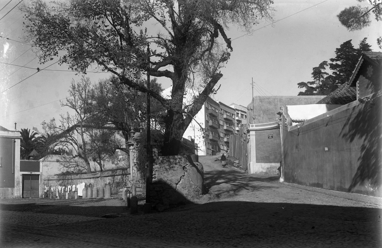 Calçada da Palma de Baixo e Estr. das laranjeiras, Lisboa (E. Portugal, 1944)