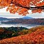 Outono vermelho - historiasylvio.blogspot.com.br