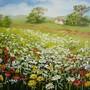 campo florido.jpg