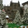 Guarda | Cidade Natal