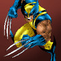 Wolverine_by_NACartist.jpg