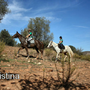 Algarve Riding Club