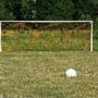 soccer_goal-16cthsg.jpg