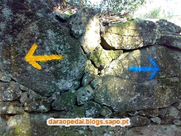 Serra_Canelas_Gaia_11