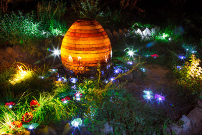 Autumn_Lights_Festival_Oakland-S.jpg
