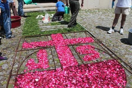 Tapetes Flores Corpo Deus Coura 2013 B