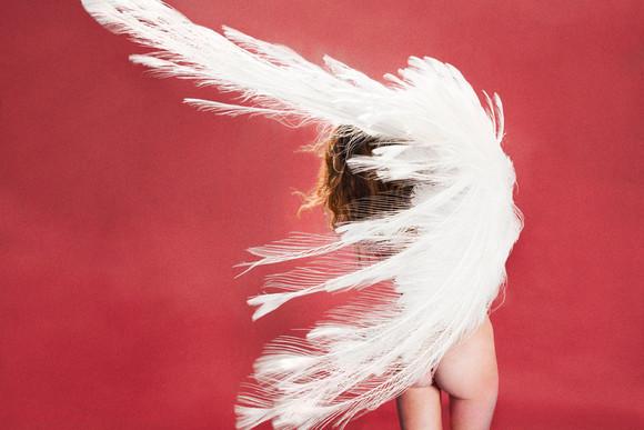 web_albino_peacock_rose_red_2012_48x721.jpg