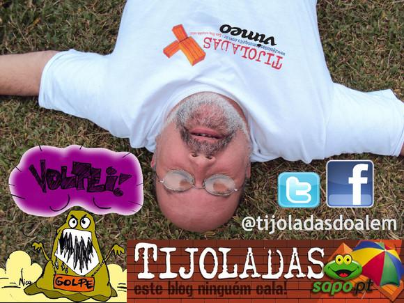 @tijoladas Mosquito FOTO