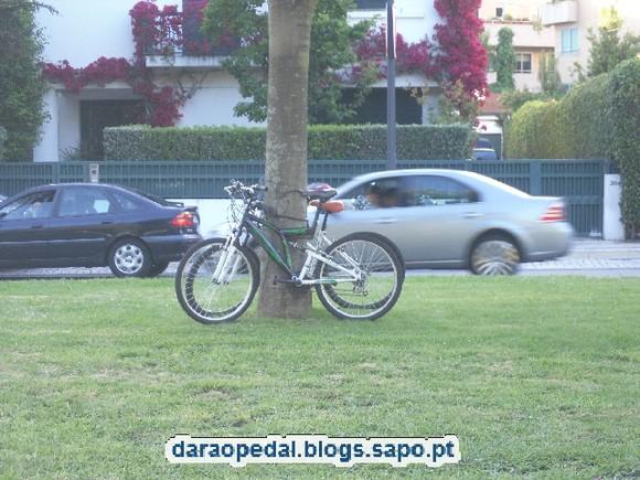 Bike_Serralves_05