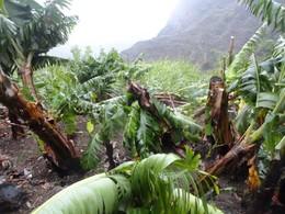 Estragos na zona de Agriões, Santo Antão