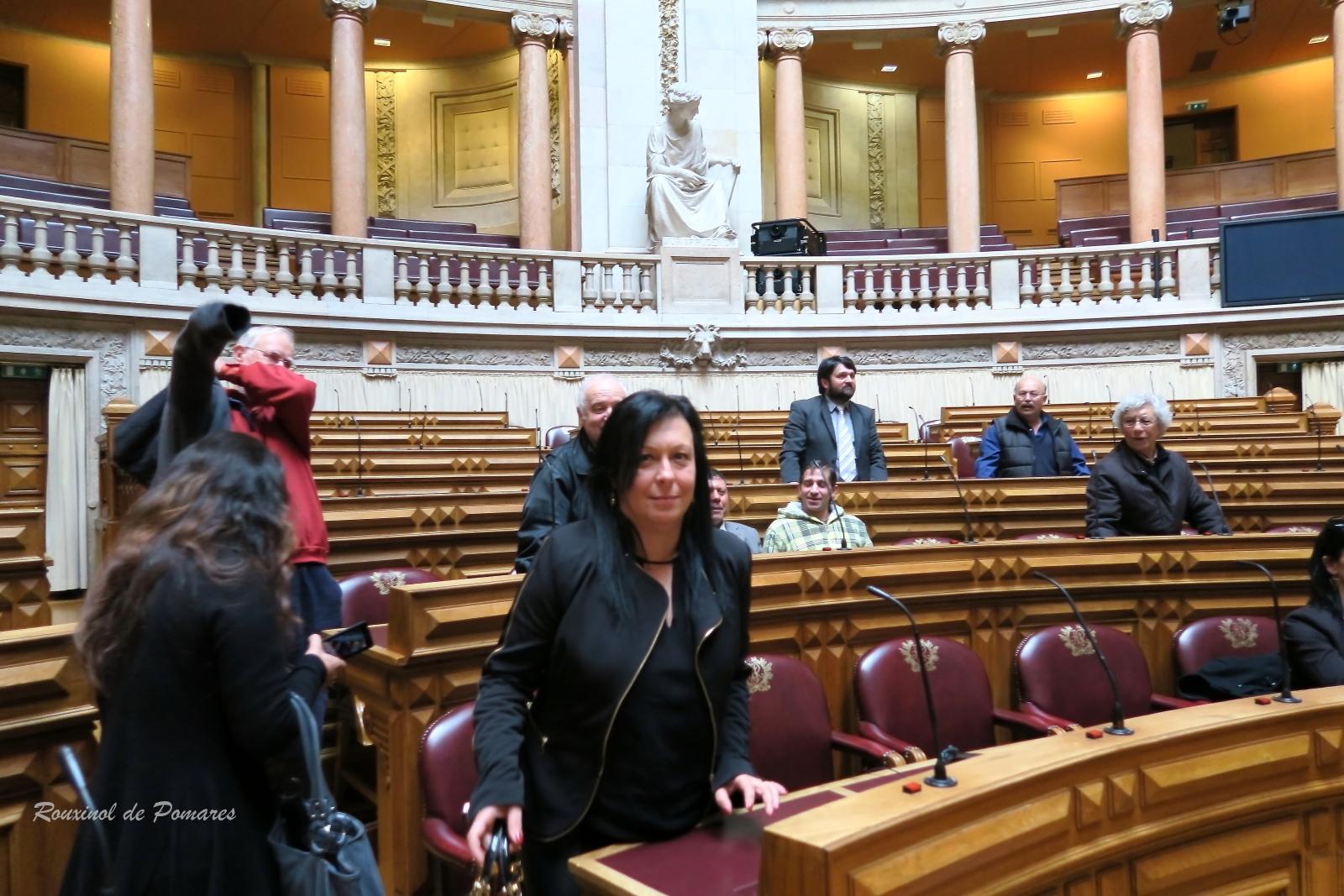 Visita à Assembleia da Rérpublica (0025)