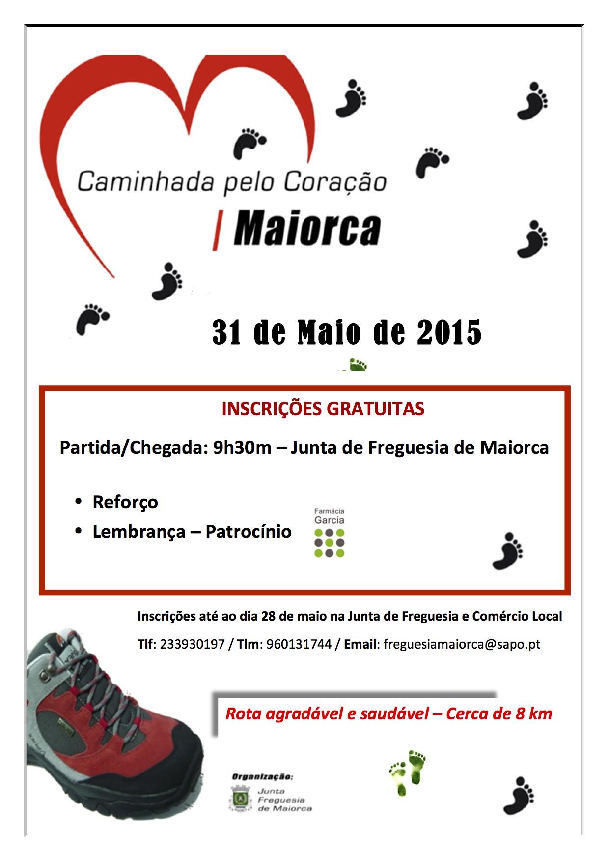 cartaz caminhada 2015.jpg