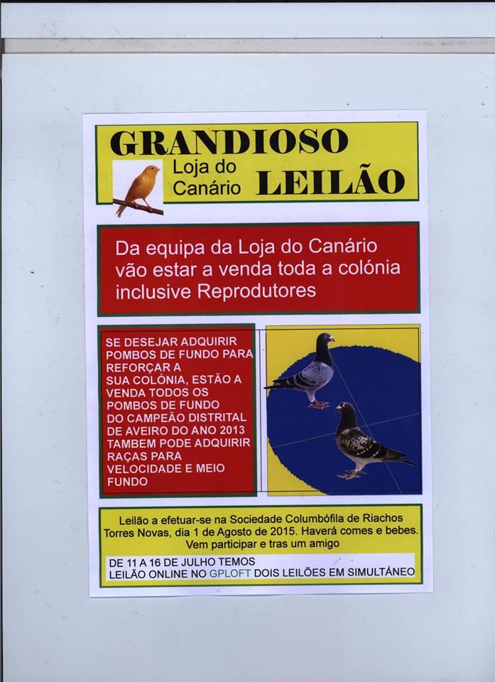 Leilão Loja Canário.jpg